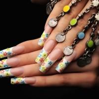 Nail Art Acrylic Nails